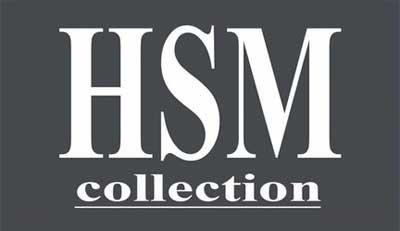 Logo HSM