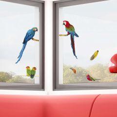 Fenstersticker Papagai