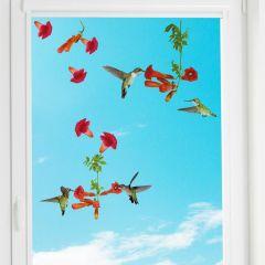 Fenstersticker Kolibris