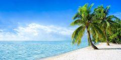 Leinwand Karibik 50x100cm